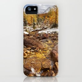 I - Larch trees in fall after first snow, Banff NP, Canada iPhone Case