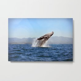 Breach Metal Print