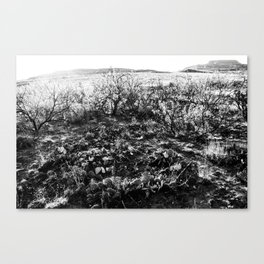 Tucumcari Canvas Print
