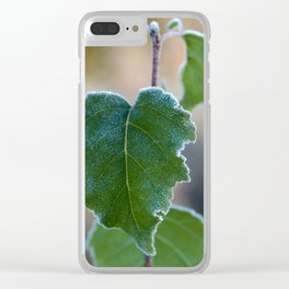 Morning Frost Clear iPhone Case