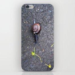 Un caracol iPhone Skin