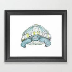 Turquoise Tortoise Illustration Framed Art Print
