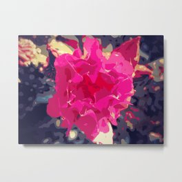 Pink Beavertail  Metal Print