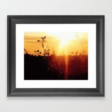 Illume Framed Art Print