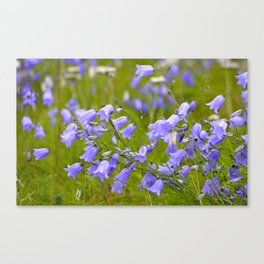 Bluebells Meadow #decor #society6 Canvas Print