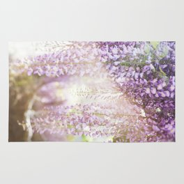 Caught the Light ... in Wisteria  //  The Botanical Series Rug
