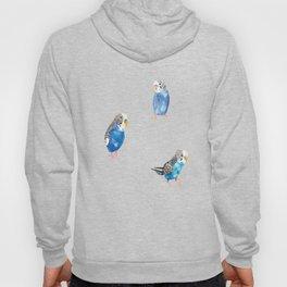 Blue Canaries Hoody