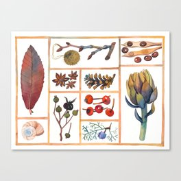 Nature Gifts 2.0 Canvas Print