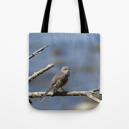 Northern Mockingbird Tote Bag
