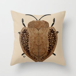Exotic Wood Tortoise Beetle Throw Pillow
