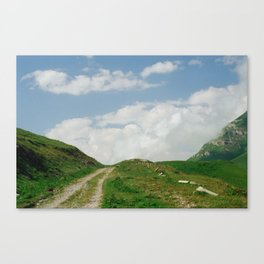 The way Canvas Print