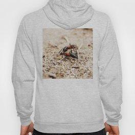 Ants 1 Hoody