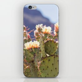 Prickly Pear Cactus Blooms, II iPhone Skin