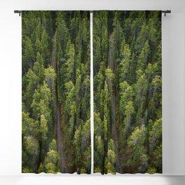 Gondola Banff    Travel Alberta   Woods   Landskape Photography   Adventure   Trees Blackout Curtain