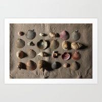 she sells seashells Art Print