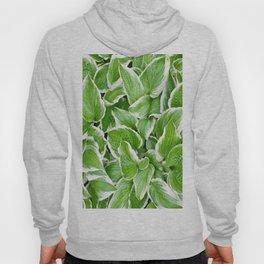 efflorescent #83.1 Hoody