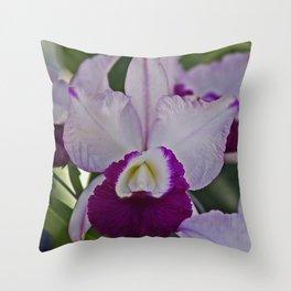 Cattleya Orchid Throw Pillow