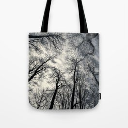 Sky-reaching Trees Tote Bag