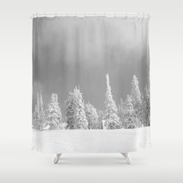 Winter day 6 Shower Curtain