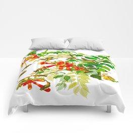 Ruby-throated Humming Bird Comforters