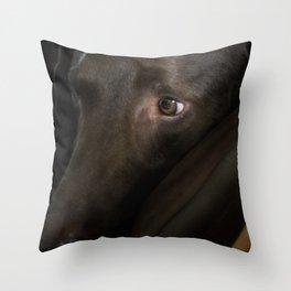 My Friend Chocolate Lab Throw Pillow