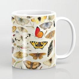 "Jan van Kessel the Elder ""An Extensive Study of Butterflies, Insects and Seashells"" Coffee Mug"