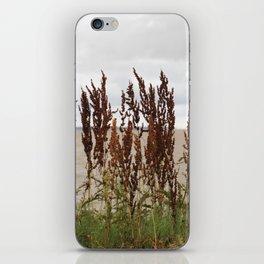 James River iPhone Skin