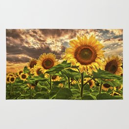 Sunflowers at Sunset Rug