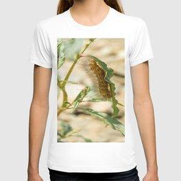 Buff Ermine Moth Caterpillar T-shirt