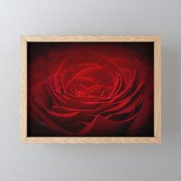 Deep Red Blood Rose On Black Framed Mini Art Print