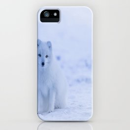 The Arctic Fox in Iceland iPhone Case