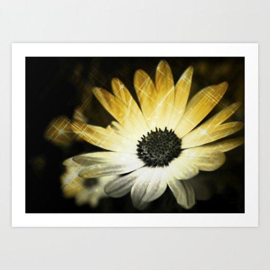 Sparkle Daisies Art Print