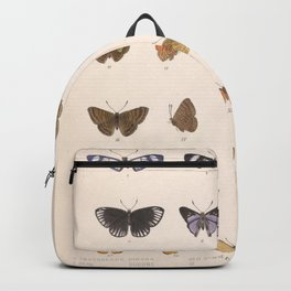 Vintage Hand Drawn Scientific Insect Anatomy Colorful Butterfly Illustration Backpack