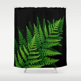 Fern Fronds on Black Shower Curtain