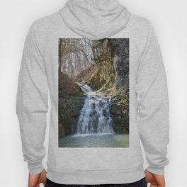 Alone in Secret Hollow with the Caves, cascades, and Critters, No.4 of 21 Hoody
