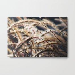 Soft Grass Metal Print