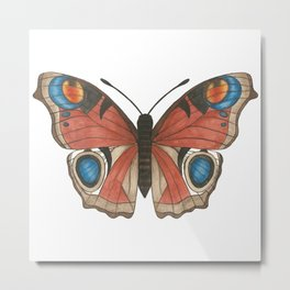 Peacock Butterfly Illustration Metal Print