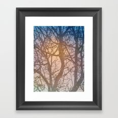 Tree Branches Framed Art Print