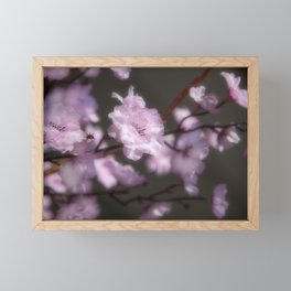 Flora in Vietnam Framed Mini Art Print