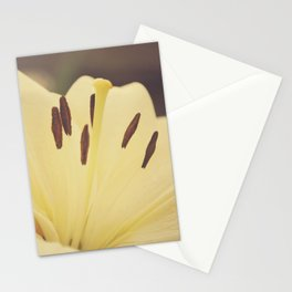 Dreamy Lily Stationery Cards