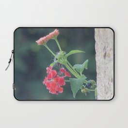 Red on the wall Laptop Sleeve