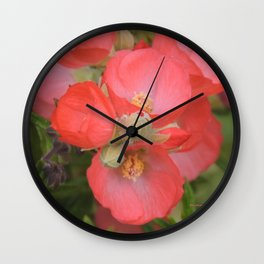 Apricot Mallow Blossoms Wall Clock