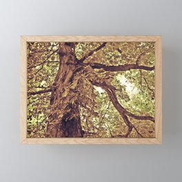 Tree of love Framed Mini Art Print