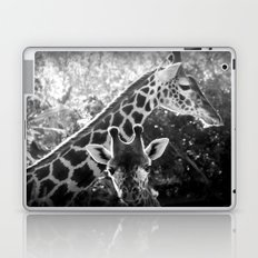 two giraffes Laptop & iPad Skin