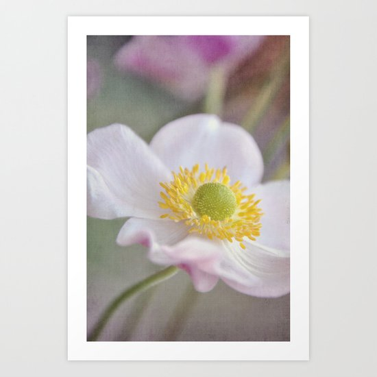 Anemone love I Art Print