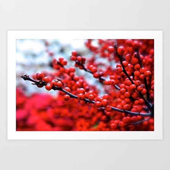 Festive Berries 2 Art Print