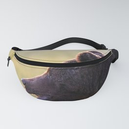 Brown bear in backlight Fanny Pack