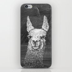 Black White Vintage Funny Llama Animal Art Drawing iPhone & iPod Skin