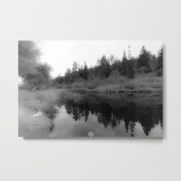 REFLECTING PEACE Metal Print
