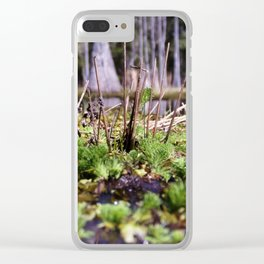 Alligator's Point of View Clear iPhone Case